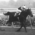 Seattle Slew: Deal of a Lifetime
