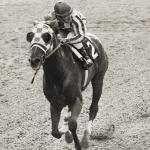 Secretariat's Kentucky Derby Shoe Sets World Record at Auction
