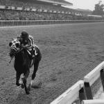 A Tremendous Machine: Secretariat in the Belmont