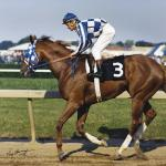 Secretariat, the Preakness, and a 39-Year Controversy