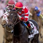 Breeders' Cup Hopeful Serengeti Empress a Gift That Keeps Giving
