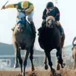 Silver Charm: As Tenacious as They Come
