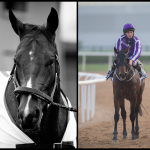 SLIDESHOW: Meet the 2018 Kentucky Derby Contenders