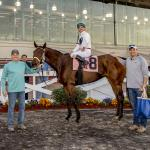 Life Beyond NFL Fueled by Horse Racing for Jake Delhomme