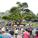 Top Trends for Betting the 2019 Belmont Derby