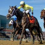 Sunny Ridge Looms Large in Charles Town Classic
