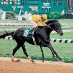 Swale: Claiborne's Derby Winner