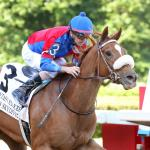 Betting Against Swiss Skydiver in the Blue Grass Stakes