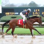 Solid Value Play Among Top Win Contenders for Oaklawn Stakes