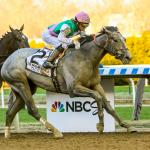 Looking Ahead: Field for 2019 Belmont Stakes Taking Shape