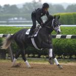 Veteran Racing Writers Ehalt, Pedulla Analyze 2017 Belmont Stakes