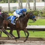 Derby Trail: Three Heating Up, Three Cooling Down for Dec. 11