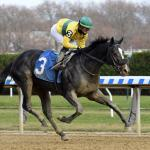 Derby Hopefuls and Other Horses to Watch in 2020 at Oaklawn Park