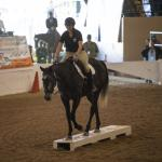 Talent, Versatility of Off-Track Thoroughbreds on Display at Retired Racehorse Project's 'Mega-Makeover'