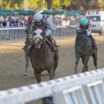 America's Best Horses for June 15