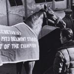 Secretariat's Belmont Blanket Offered at Auction