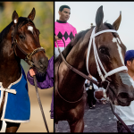 Eclipse Awards Finalists Revealed, Led by Horse of the Year Candidates