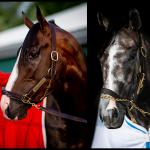 SLIDESHOW: Meet the 2019 Belmont Stakes Contenders