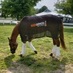 BODYARMOR Sports Drink to Partner with Belmont Stakes Runners Vino Rosso and Noble Indy