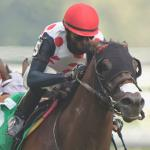 Woodbine Mile Quick Sheet: Get to Know the 2021 Woodbine Mile Horses