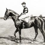 Hollywood Can't Diminish War Admiral's Triple Crown Achievement