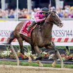 Closer Look at Preakness Victor War of Will, Looking Ahead to Belmont