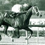 Notable Fillies in Major Kentucky Derby Prep Races