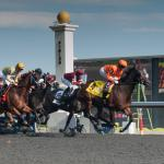 America's Best Racing and Woodbine Entertainment Announce Marketing Partnership