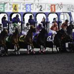 Betting Woodbine's Eclipse Stakes on a Budget