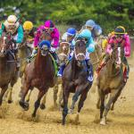 Why the Preakness Is an Intriguing Race to Bet