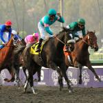 Breeders' Cup to Celebrate 10th Anniversary of Zenyatta's Historic Classic Win