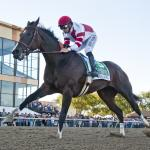 Sensational Songbird Extends Unbeaten Streak to 11 in Cotillion