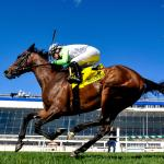 Q&A with Ilana Cramer About the New Maryland Thoroughbred Career Program