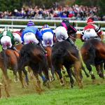 2020 Breeders' Cup Turf at a Glance