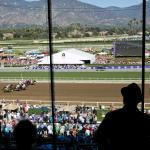 2019 Breeders' Cup Juvenile Fillies at a Glance
