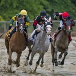 Short Fields Required Creativity to Make Profit on Preakness Day