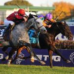 Looking Back at 12 Amazing Upsets in the Breeders' Cup
