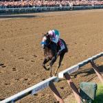 Arrogate Ready and Able to Defeat California Chrome in Classic