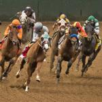 Breeders' Cup Classic Cheat Sheet