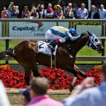 Stay Lucky Weekly Guide: Preakness Weekend Primer