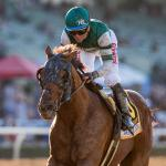 Breeders' Cup Under the Microscope: Identifying the Classic Winner