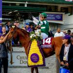 Justify or Accelerate? Breeders' Cup Result Stirs Horse of the Year Debate
