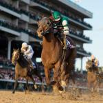 Accelerate Caps Brilliant Season with Breeders' Cup Classic Score