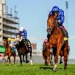 Road to 2021 Breeders' Cup: Three Heating Up, Three Cooling Down for Sept. 22