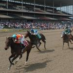 Best Bets: Loaded Aqueduct Saturday Card a Great Opportunity
