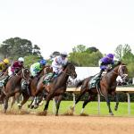 2021 Arkansas Derby At a Glance
