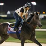 Hangin' With Haskin: Arrogate, Where Are You?