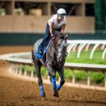Making Money Betting Arrogate in the San Diego Handicap