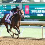 Key Takeaways from Blue Grass Stakes Weekend