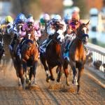 Key Takeaways from the 2020 Breeders' Cup